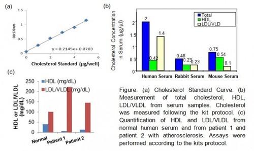 HDL and LDL/VLDL Quantification Colorimetric/Fluorometric Kit