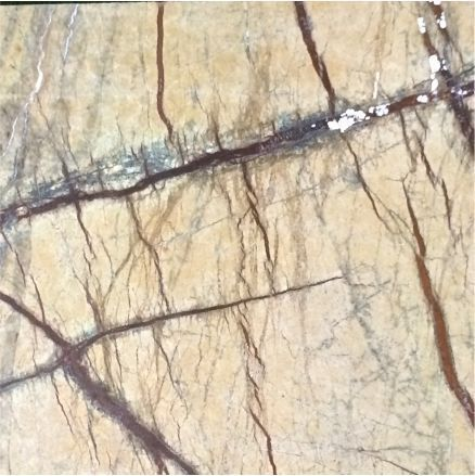 Rainforest Brown Sandstone