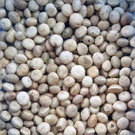 Nirmali Seed