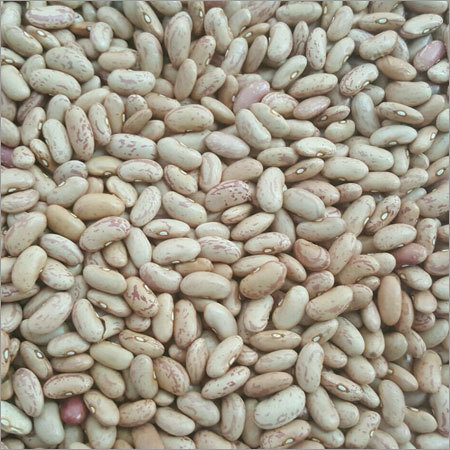 Chitra Beans