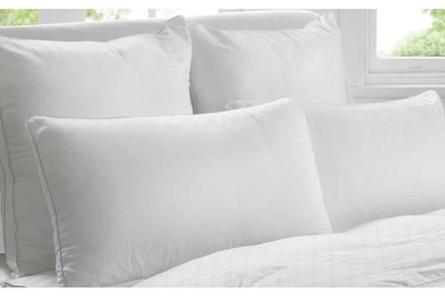 Cushion Pillows
