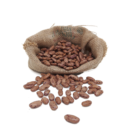 Organic Rajma Red