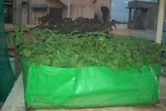 HDPE Grow Bags Rectangle