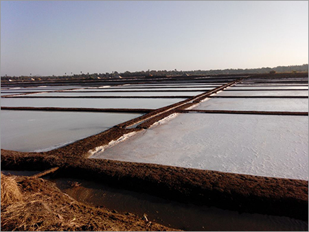 Evaporated Salt Pond