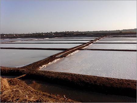 Evaporated Salt