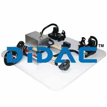 Power Door Lock System Trainer Two Door Hyundai