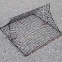 Bird Net Trap