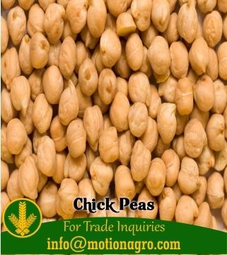 Chick Peas Kabuli Chana