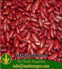 Dark Red Beans