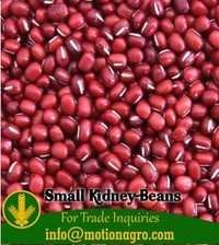 Small Kidney Beans