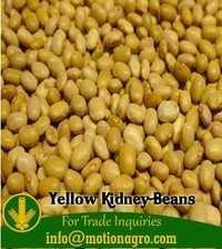 Yellow Kidney Beans