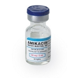 Injection Amikacin