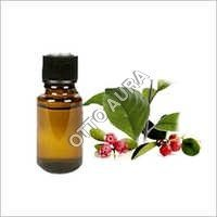 Wintergreen Oil
