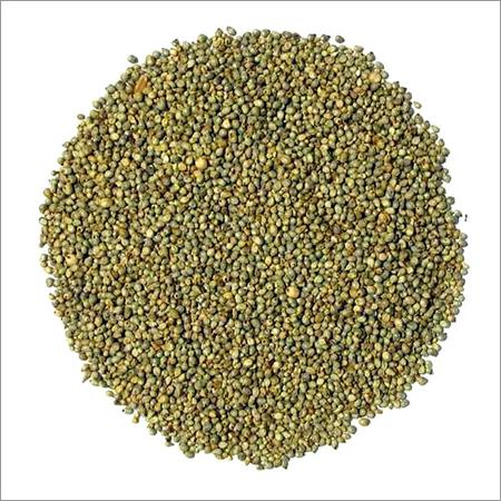Bajra Grain