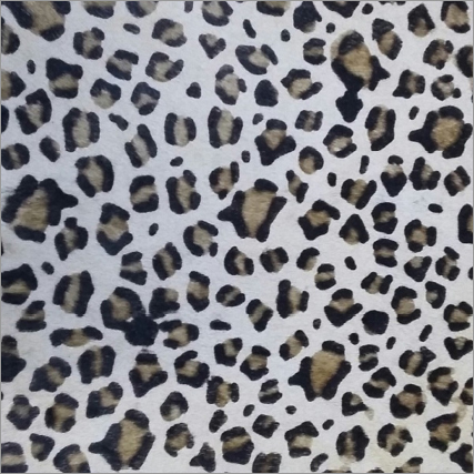 Leopard Print Hairon Leather