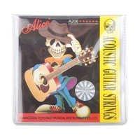 Alice Guitar