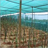 Plant Supporting Nets