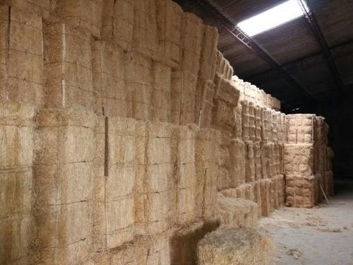 wood wool bundle