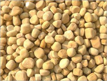 Teak Wood Pebbles