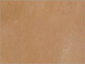 Camel Yellow Sandstone