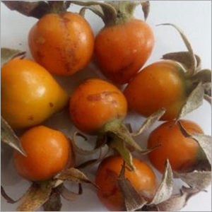 Rosehip extract vitamin C