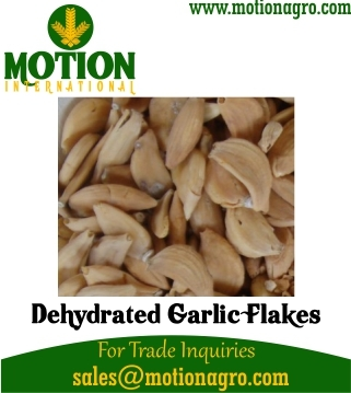 Dehydrated Garlic Flakes / Cloves