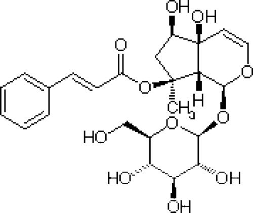 Harpagophytum procumbens extract