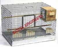 Bird Rearing Cages