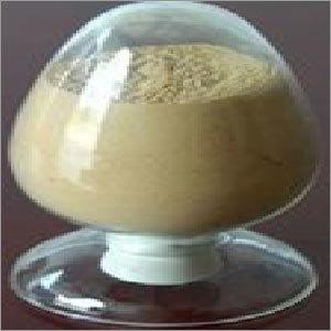 Fungal Alpha Amylase