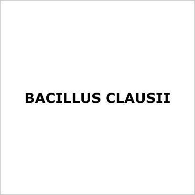 Bacillus Clausii
