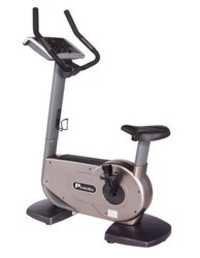 Commercial Upright Bike