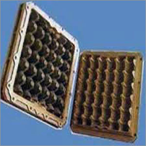 Egg Mould Disposable Tray