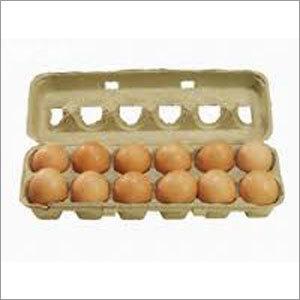 Portable Egg Boxes