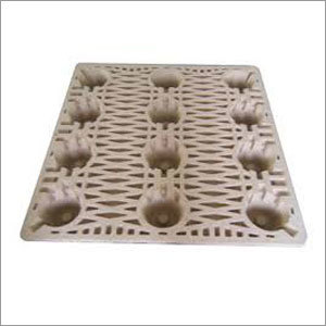 Paper Pulp Moulded Tray