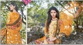 Sethnic Wholesale Vardan Navya Platinum 146 A Chiku budget dress supplier