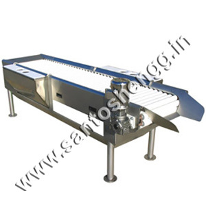 Inspection tables conveyors
