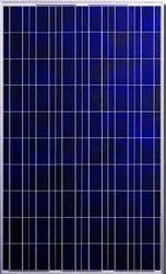 60W Solar PV Module