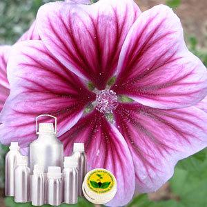 Geranium Leaf Absolute Oil