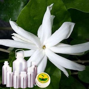 Jasmine Grandiflorum Absolute Oil