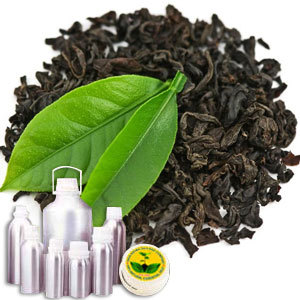Tea Black Absolute Oil