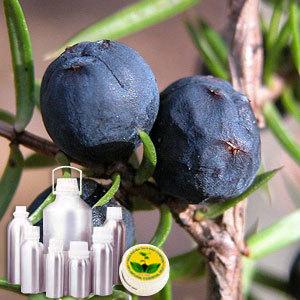 Juniperberry Oil Certified Organic