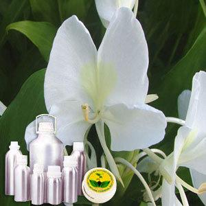 Hedychium Water