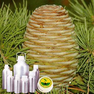 Cedarwood CO2 Extract Oil