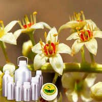 Frankincense Co2 Extract Oil