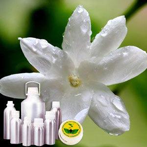 Jasmine CO2 Extract Oil