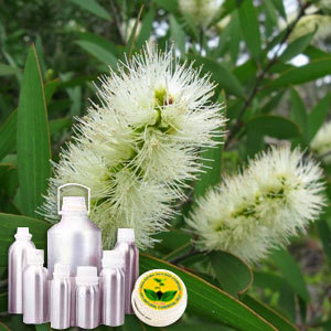 Tea Tree CO2 Extract Oil