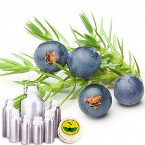 Wildcrafted Juniper Berries Oil