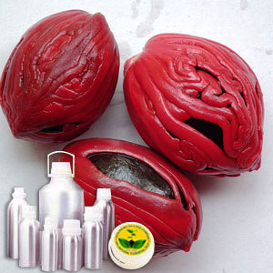 Nutmeg Extra Oil