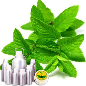 Wildcrafted Spearmint Oil