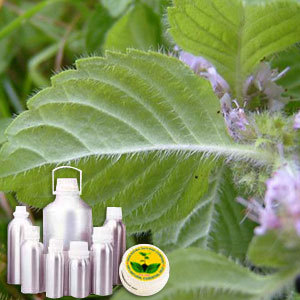 Leaf Acetate Or CIIS III Hexanol